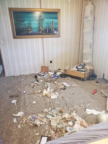 Mattress removal Palmetto FL - After Photo