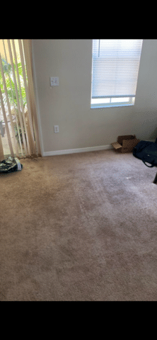 Condo Cleanout Mattress Removal