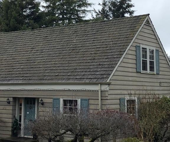 Woodcrest Mesquite, Seattle - Before Photo