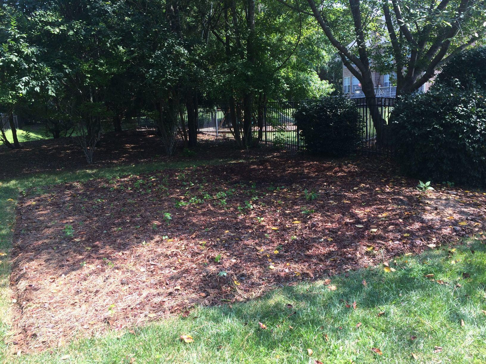 Playset Removal in Weddington, NC - After Photo