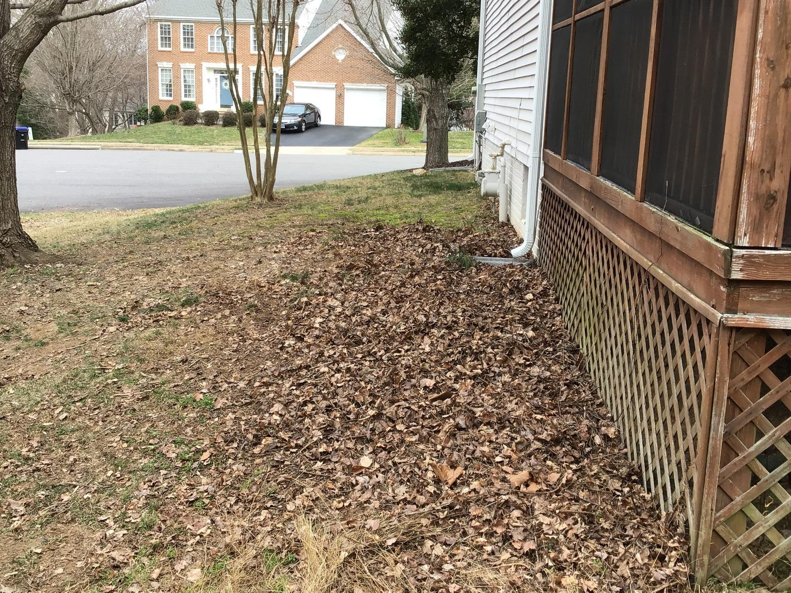 Yard Debris Removal in Fairfax Station, VA - After Photo