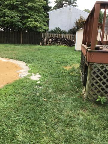 Yard Cleanup in Bealeton, VA