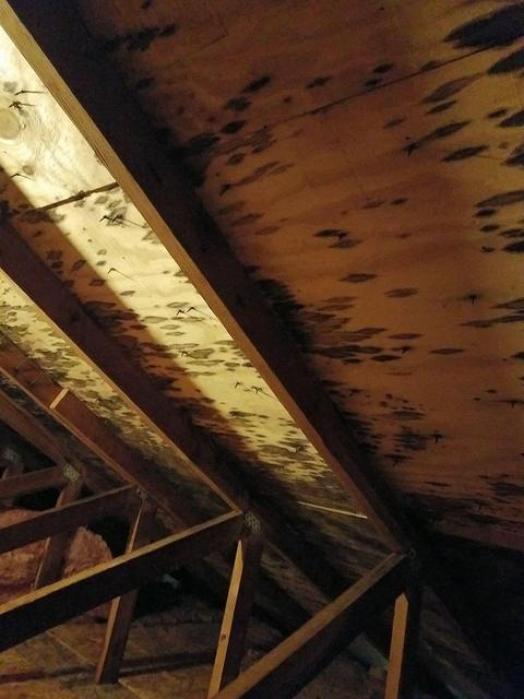 Attic mold in Newtown, CT - Before Photo