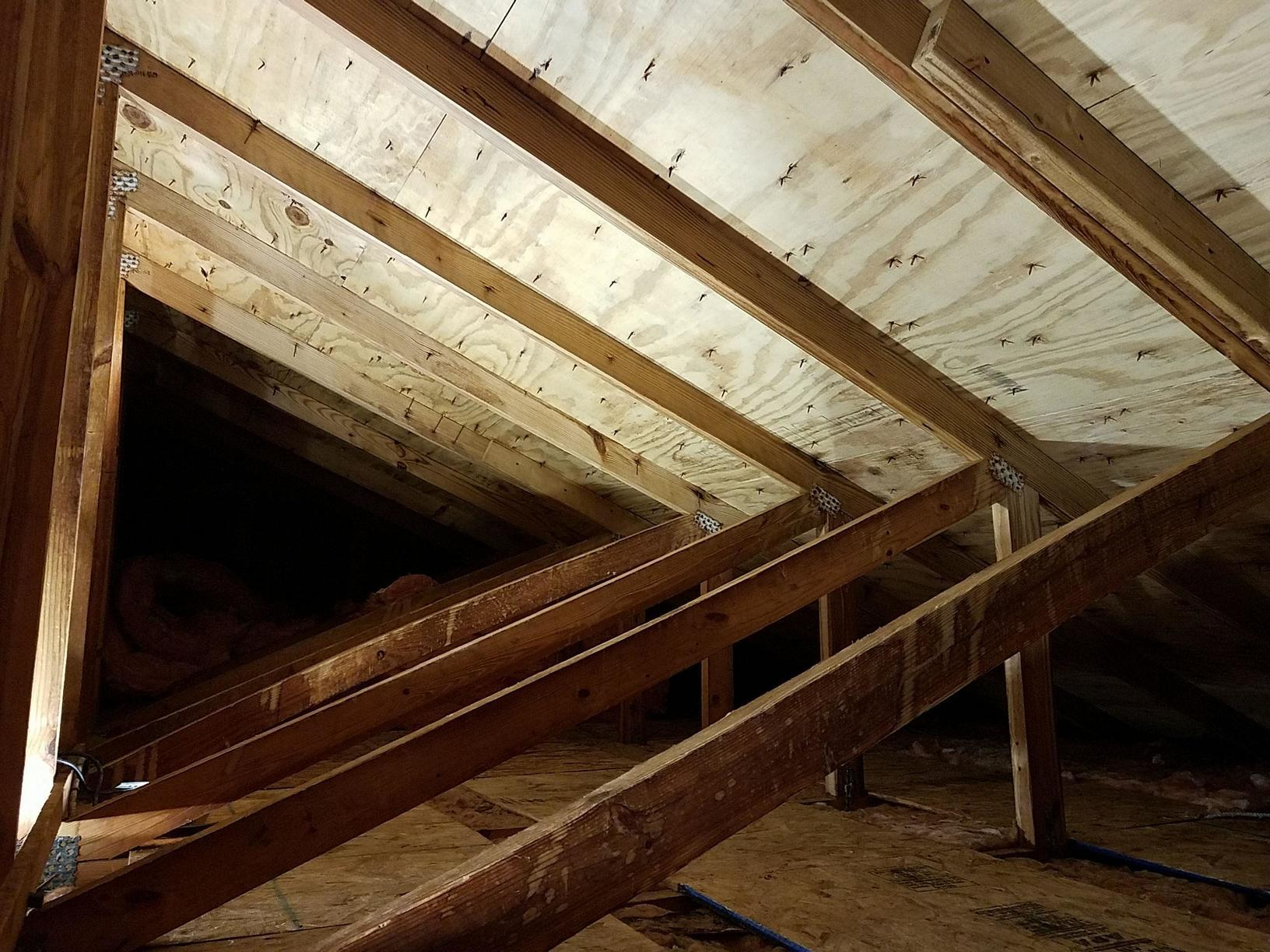Attic mold in Newtown, CT - After Photo
