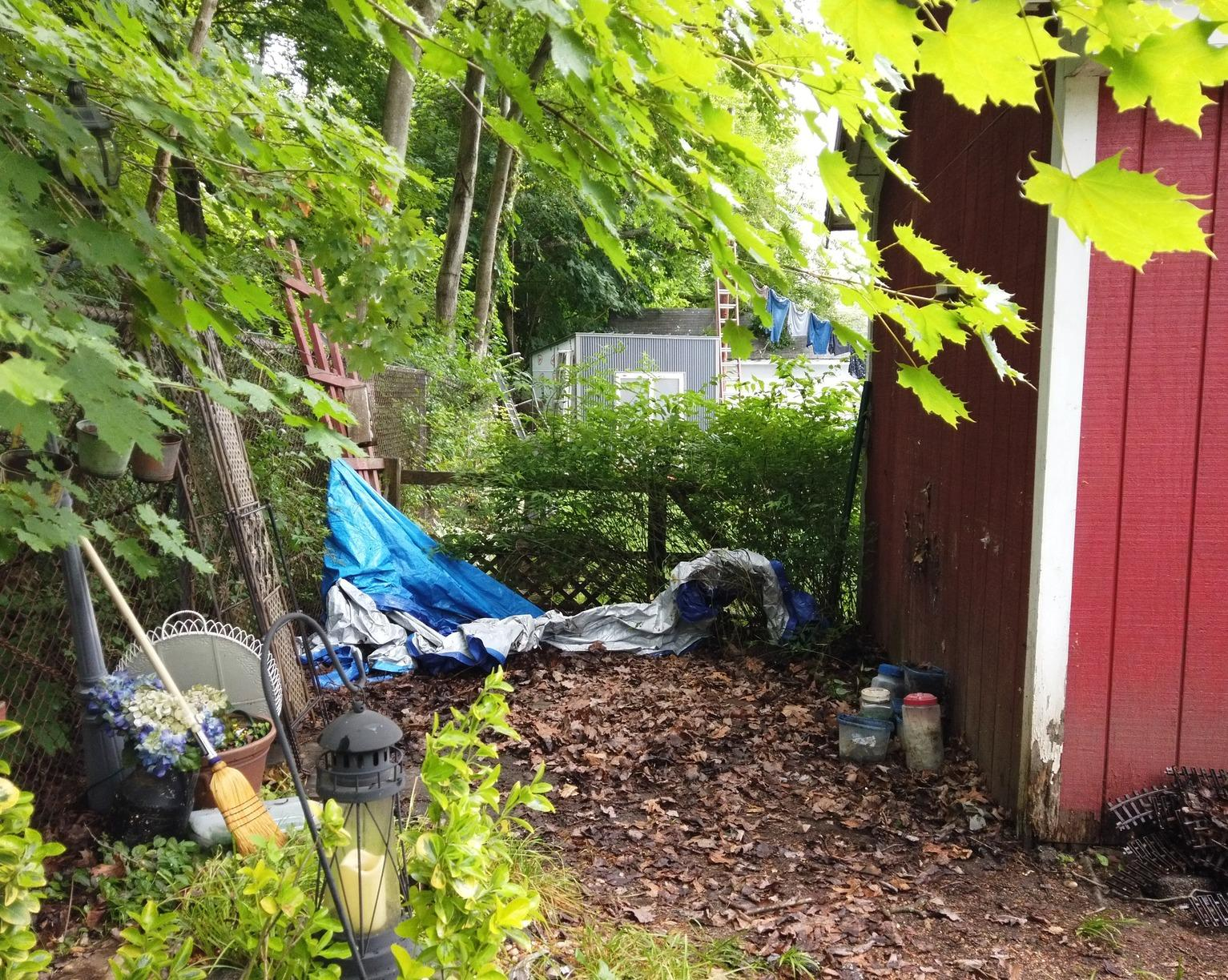 Outdoor Clean Up in Beacon Falls, CT - After Photo