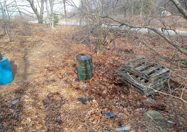 Outdoor Cleanup in Wolcott, CT