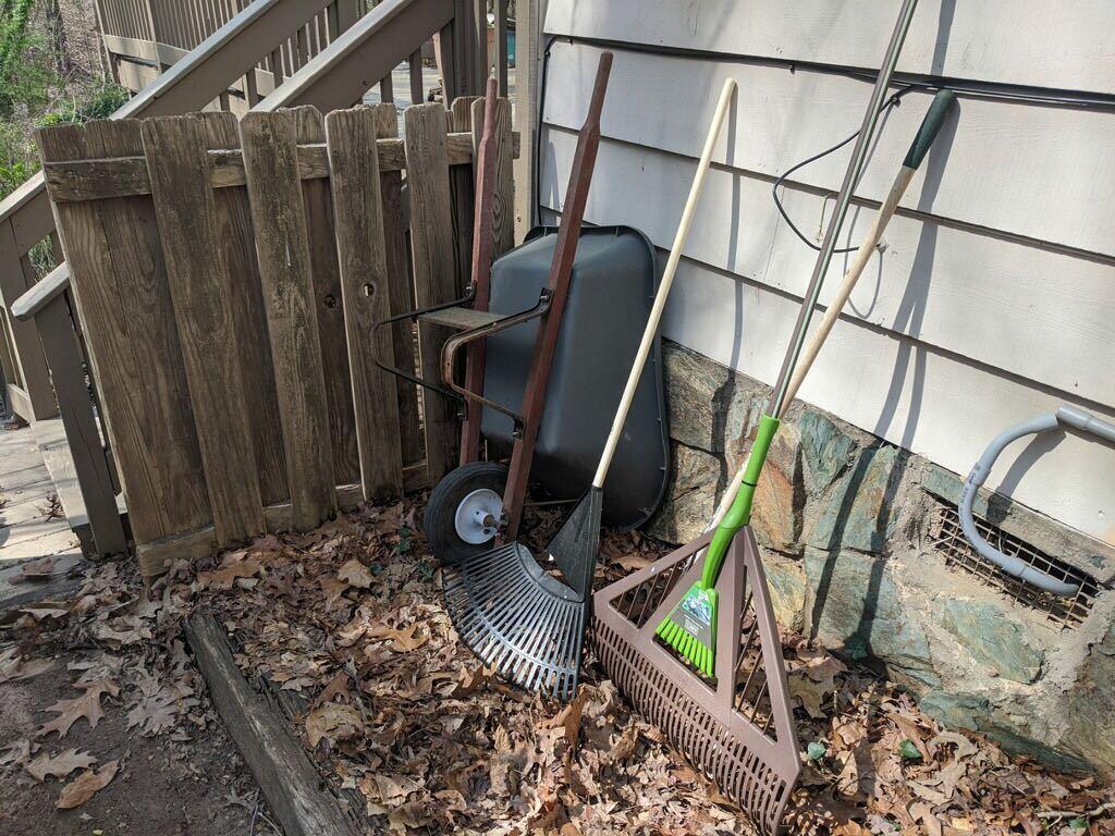 Backyard Cleanup in Milton, GA - Before Photo