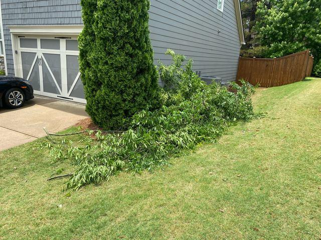 Yard Debris Removal in Cumming, GA