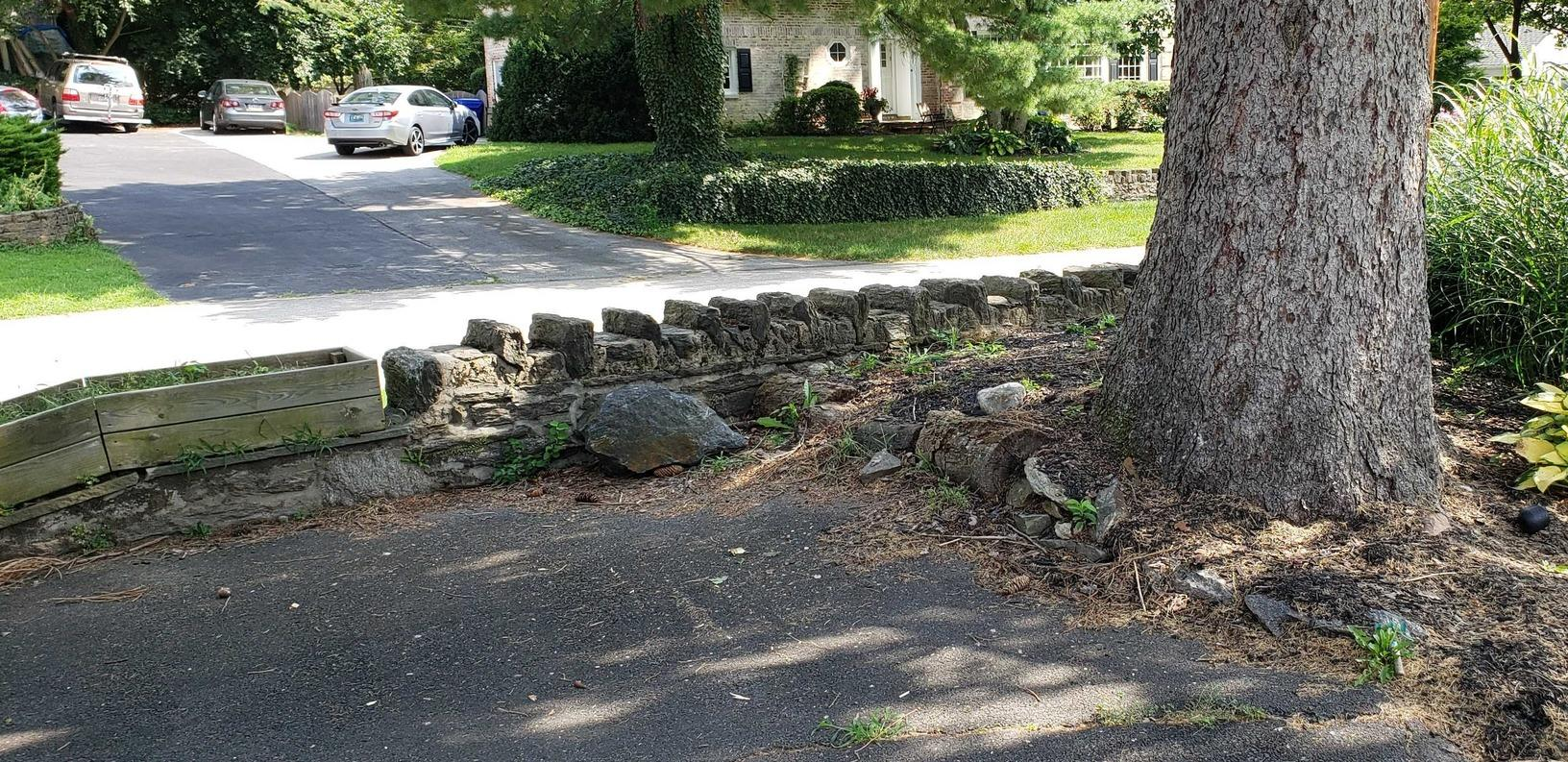 Curbside Pickup in Elkins Park, PA - After Photo