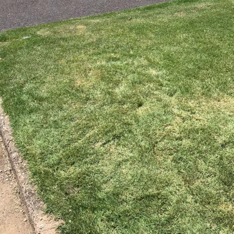 Stone Removal in Abington - Curbside (Contactless)