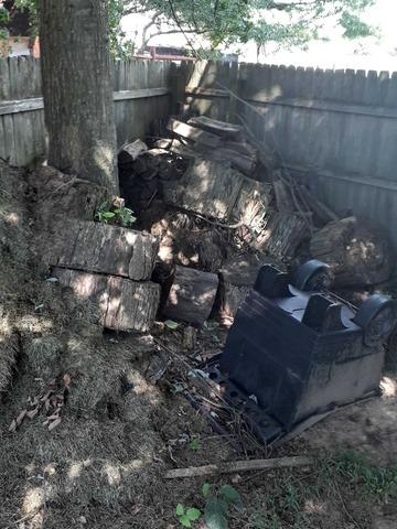 Tree Debris Removal in Horsham, PA - Before Photo