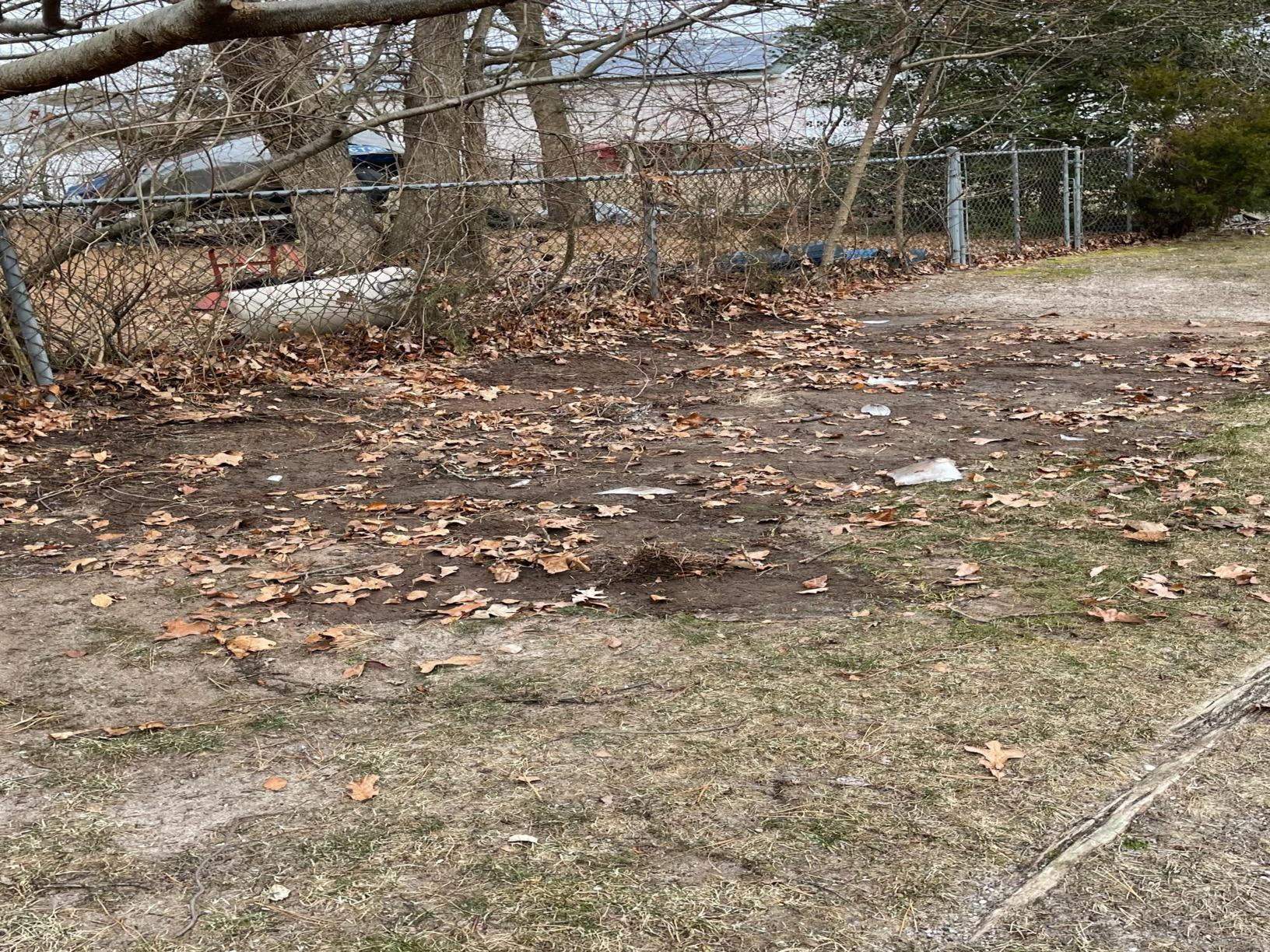 Bayville, NJ 08721 Yard Debris Clear Out - After Photo