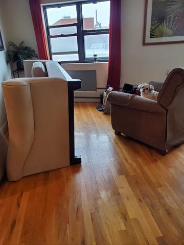 Sofa and Recliner Removal in Astoria, NY