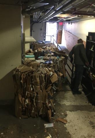 Cardboard Cleanup in Brooklyn, NY