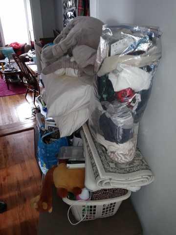 Rubbish Removal and Clean Up - Bay Ridge Brooklyn, NY