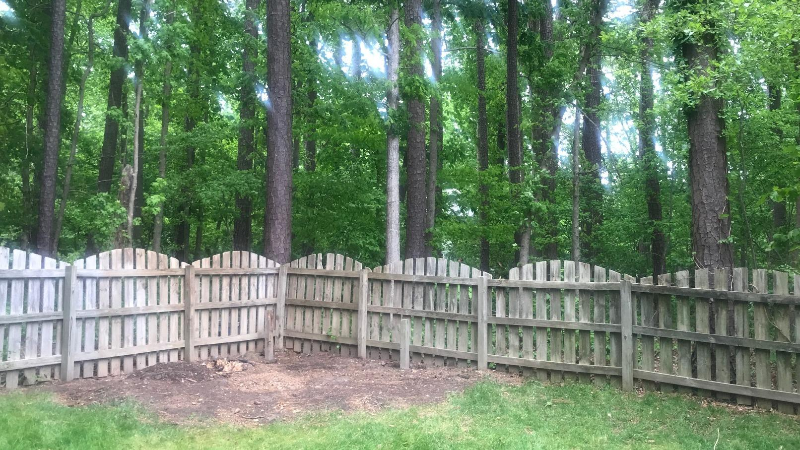 Tree House Removal in Cary, NC - After Photo