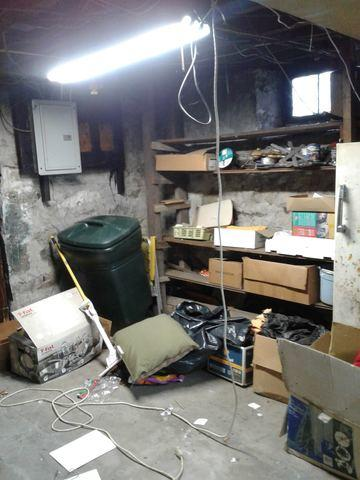 Basement Cleanout in Norwalk, CT