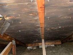 Mold in Attic Livonia, MI - Before Photo