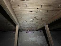 Mold in Home Attic, Rochester - Before Photo