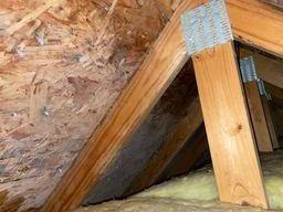 Attic mold lack of ventilation, Hartland