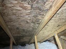 Mold in attic Whitmore Lake, MI