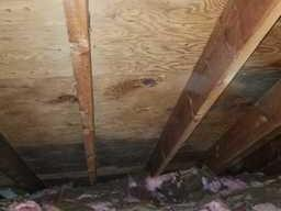 Mold in Attic Discovered,  Bloomfield Hills