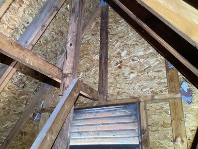 Mold in attic, Birmingham