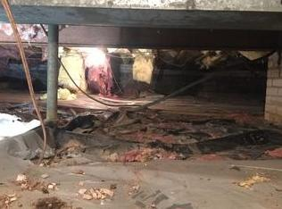 A Crawl Space Makeover - Nasty to Nice - Before Photo