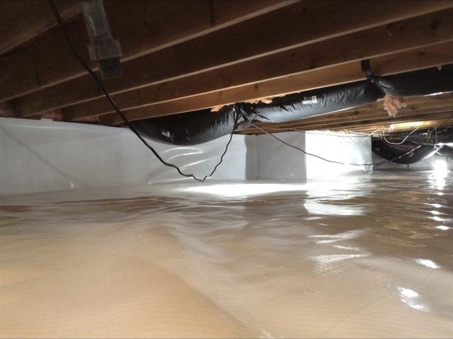 Failing Crawl Space Insulation & Vapor Barrier Replaced in Port Huron, MI