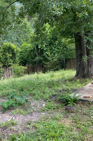 Yard Debris Removal in Castle Hayne, NC