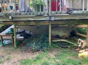 Under Porch Storage Clean Up in Williamsburg, VA - Before Photo