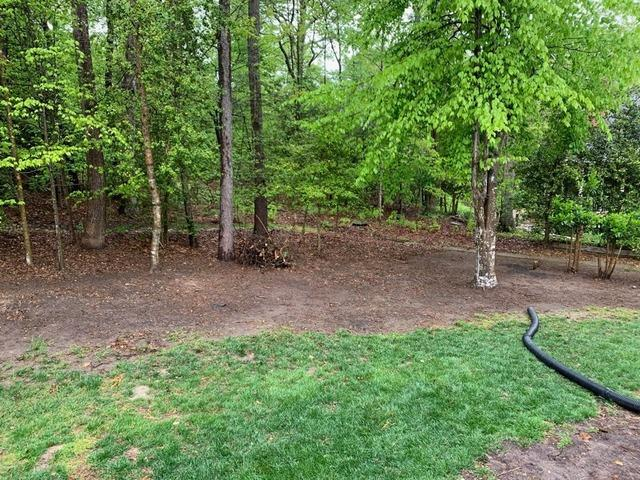 Back Yard Debris Removal in Williamsburg, VA