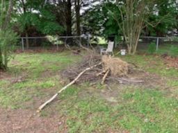 Yard Debris Pickup in Surry, VA
