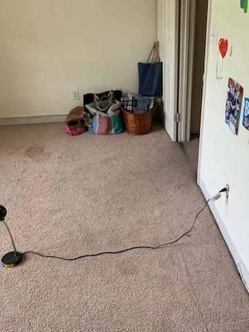 De-cluttering in Newport News, VA