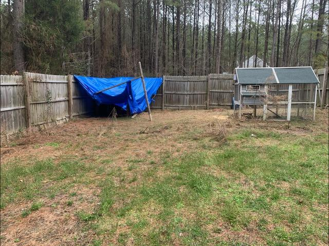 Back Yard Clean Up in Toano, VA