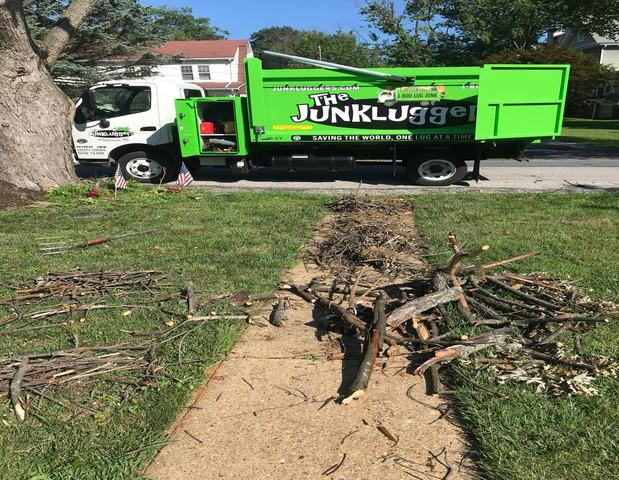 Yard Debris Removal in Catonsville, MD