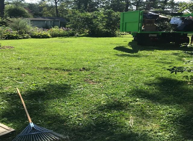 Yard Cleanup in Catonsville, MD