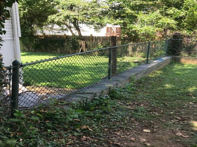 Yard clean up, Gwynn Oak MD.