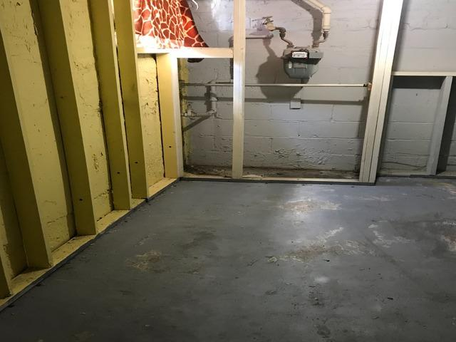 Basement clean out, Cockeysville MD