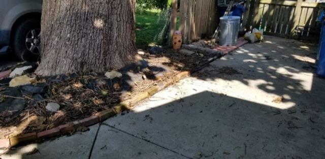 Yard Cleanup in Liberty, Mo