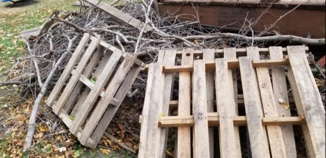 Wood Removal in Lenexa, KS