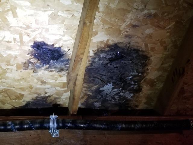 Roof Repair in Wauwatosa