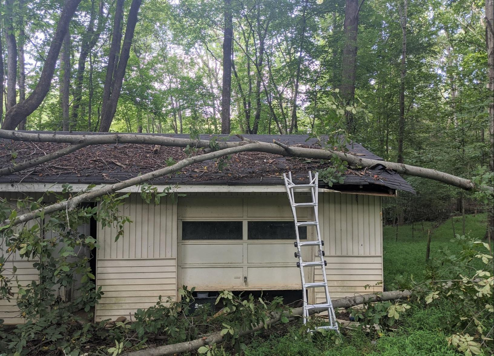 Repairing Damaged Roof from Knocked Over Tree in Oak Ridge, NC - Before Photo