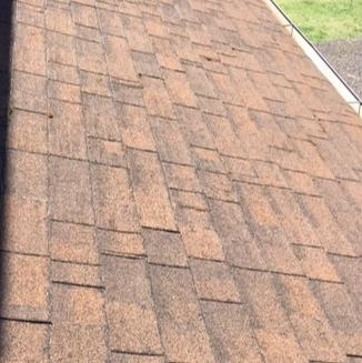 Old, Leaking Roof Replaced in Corvallis, OR - Before Photo
