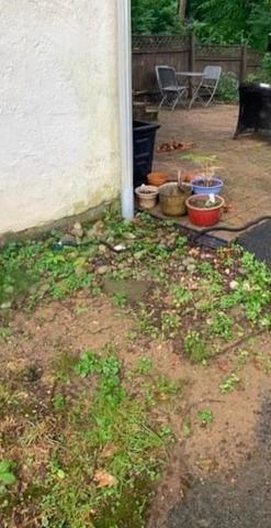 Declutter my backyard in Devon, PA