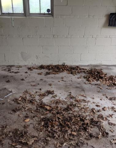 Declutter my house in Devon, PA