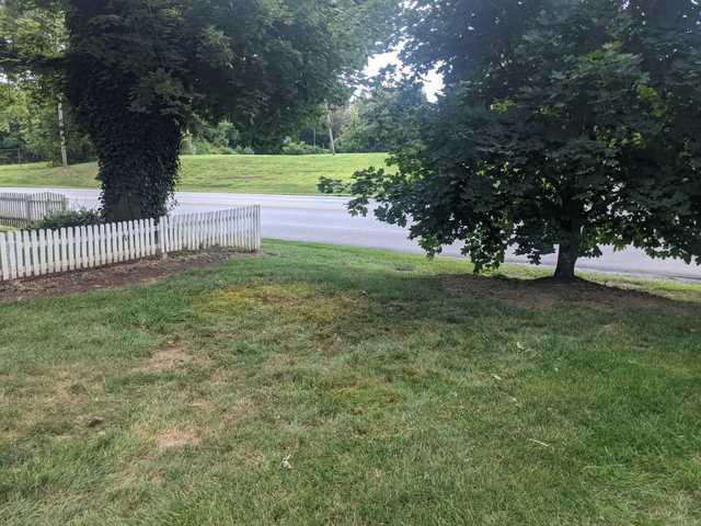 Yard Cleanup in Oxford, PA