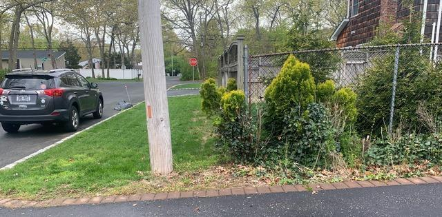 Curbside Pickup In Holtsville, NY - After Photo