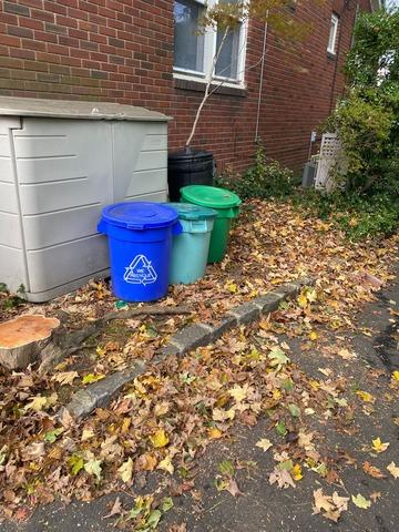 Yard Cleanup  in Sea Cliff, NY
