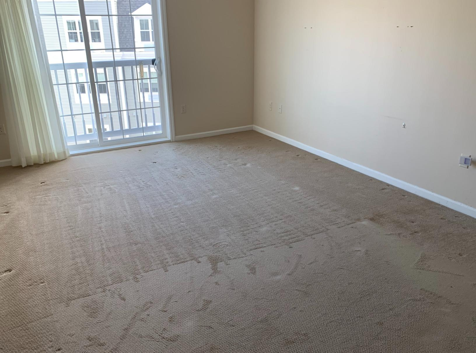Apartment cleanout in Canton, MA - After Photo